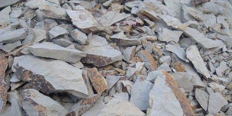 Limestone, Granite, Schist: Discovering Minerality  tickets