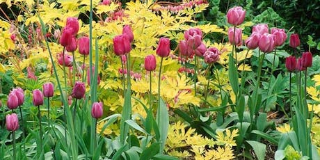 Bulb Talk: Mixing Spring Bulbs with Perennials tickets