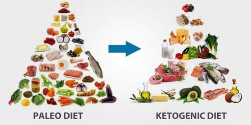 Health Pops - A Paleo/Keto diet for low carb needs and possible weight loss