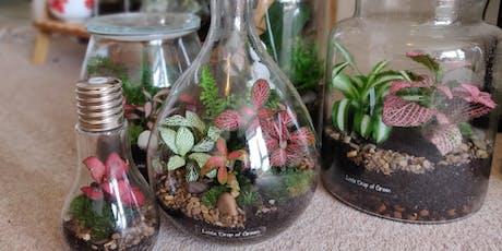 Little Drop of Green: Terrarium Workshop tickets