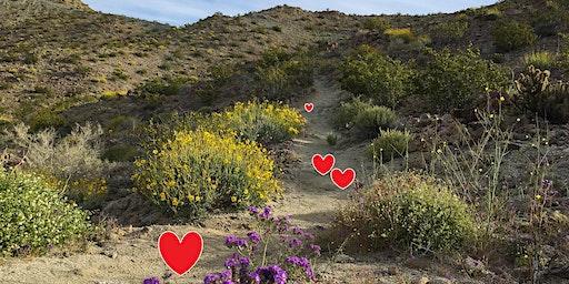 Valentine Day Hike