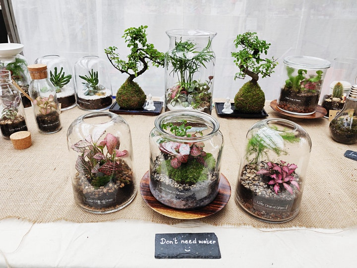 Uncommon Borough Terrarium Workshop: Self-sustaining garden in a Jar image