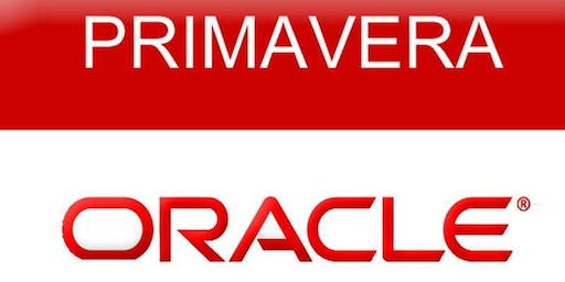 Oracle Primavera P6 Fundamentals Training Course (2 days) | Toronto - Weekend Class