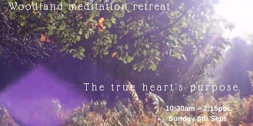 Autumn woodland meditation retreat