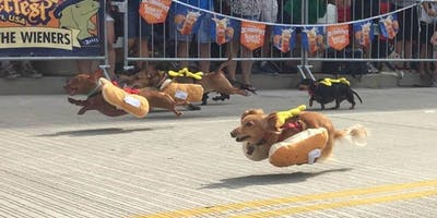 2019 Running of the Wieners Race