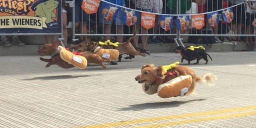 2019 Running of the Wieners Race