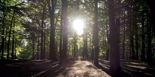 Hazel Hill Autumn Conservation Weekend