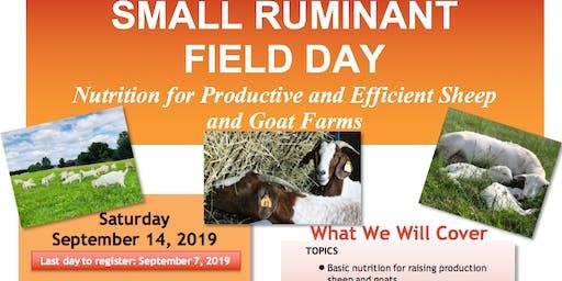 Small Ruminant Field Day