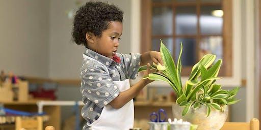 "BLACKS, BELIEVERS & THE MONTESSORI WAY: ""Montessori Roots Historical Truth"""