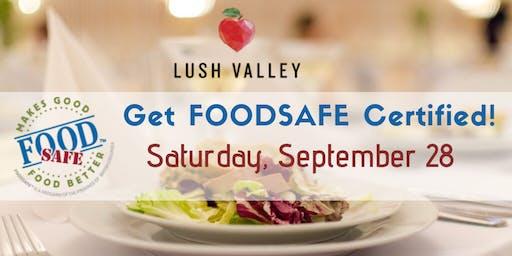 Food Safe Level 1 Workshop