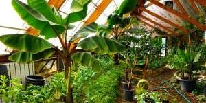 Sustainability Skills Workshop: Sustainable Greenhouse Design