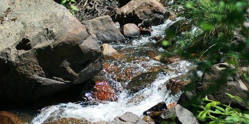 Faith Can Move Mountains  - A Biblical Garden Retreat with Yale Kim Sept 21, 2019