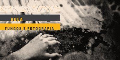 AULA | Fungos e fotografia