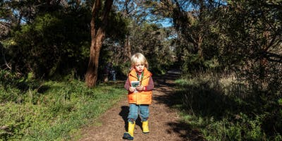 Kids Walk - Dandenong Ranges National Park