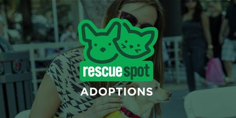 Pacific Pups Rescue - KITTEN Adoption! tickets
