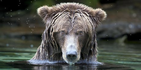 BC Bear Day - Evening feature - Co-existence with bears  tickets
