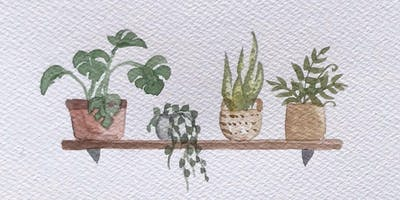 Watercolour for Beginners - House Plants
