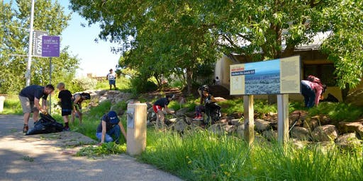 NM Natural History Museum Landscaping Project
