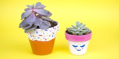 Paint And Pot Cute Succulents