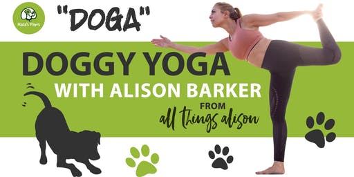 Doggy Yoga Class  with Alison Barker at Hala's Paws