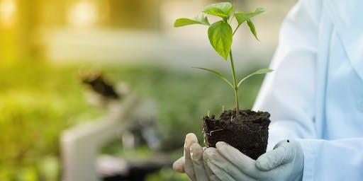 Brisbane Consultation Workshop – Agronomy project