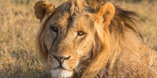 Africa & Madagascar information evening