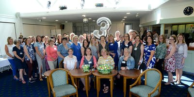 Somerset Ladies in Business Networking Group