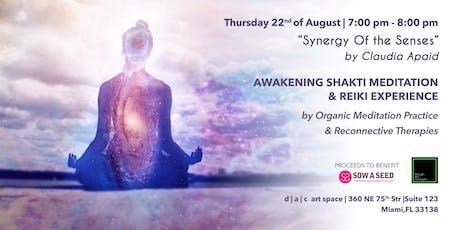 Awakening Shakti Experience  & Reiki tickets