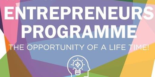 Entrepreneurship programmes