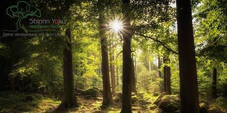 Shinrin Yoku | Waldbaden :: Entspannt ins Wochenende Tickets