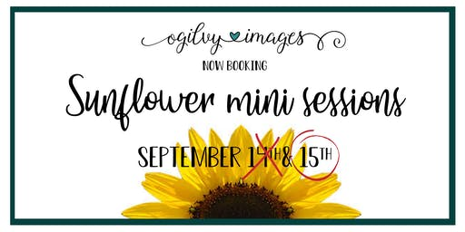 Sunflower Mini Sessions 9.15.19