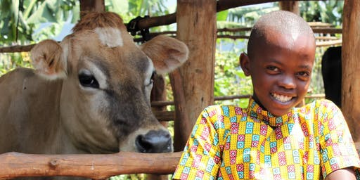 The Jersey Cow Overseas: Our Greatest Ambassador