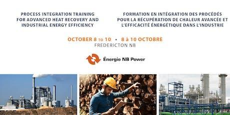 Process Integration Training for Advanced Heat Recovery and Industrial Energy Efficiency / Formation en intégration des procédés pour la récupération de chaleur avancée et l'efficacité énergétique dans l'industrie tickets