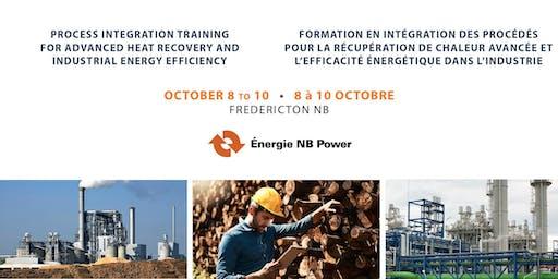 Process Integration Training for Advanced Heat Recovery and Industrial Energy Efficiency / Formation en intégration des procédés pour la récupération de chaleur avancée et l'efficacité énergétique dans l'industrie