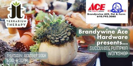 Pumpkin Succulent Workshop at Brandywine Ace Pet & Farm tickets