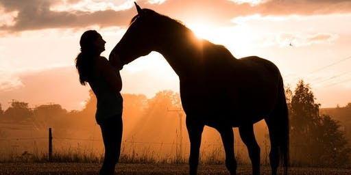 Womben Whispering with Horses: Deepening Your Feminine Power