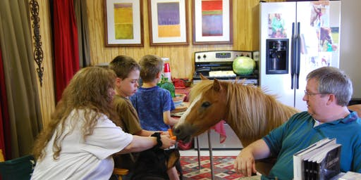 Faith Based Equine Assisted Philosophy-Stable Families Certification
