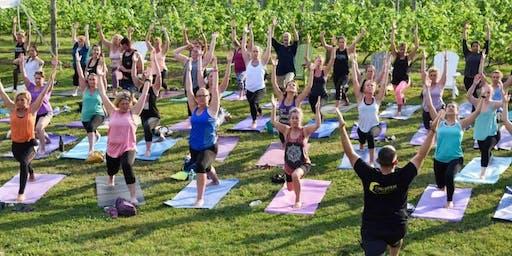Yoga at Arrigoni Winery - SEP 2019