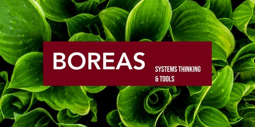 Boreas Workshop: Systems Thinking & Tools