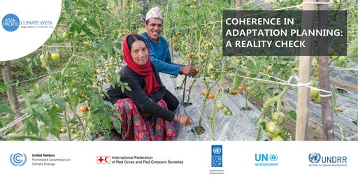 Coherence in Adaptation Planning: A Reality Check