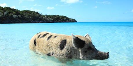 KAKADU | Die fabelhafte Welt der Schweine Tickets