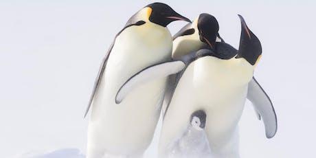 Wilde Dynastien – Kaiser der Antarktis Tickets
