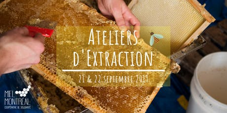 Extraction de miel - Septembre 2019 billets