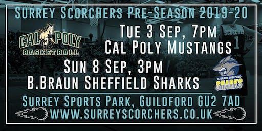 Surrey Scorchers - Pre-Season Two-Game Saver!