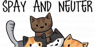 Fixin'' the Felines