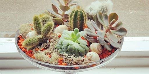 Cactus Terrarium Workshop