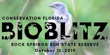 Conservation Florida: Bioblitz tickets