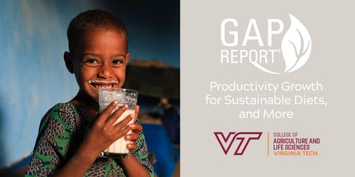 Productivity Growth for Sustainable Diets, & More: Report Launch and Lunch