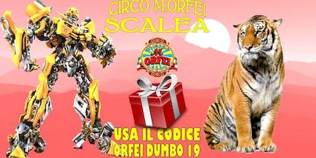 Il Circo M.Orfei a Scalea dal 16 al 26 agosto biglietti