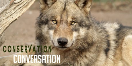 Wolf Recovery in the Wild tickets